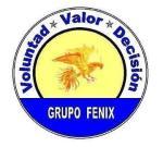 grupo-fenix-apoyame-soluciones-fisi-unmsm